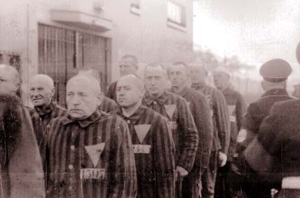 Holocaust prisoners wearing the upside-down pink triangle indicating homosexuality, courtesy of the UMKC Library